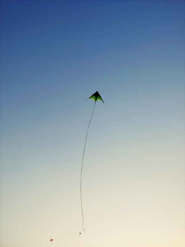 green kite flying on sky